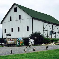 urbana-farm