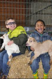 boys-with-animals