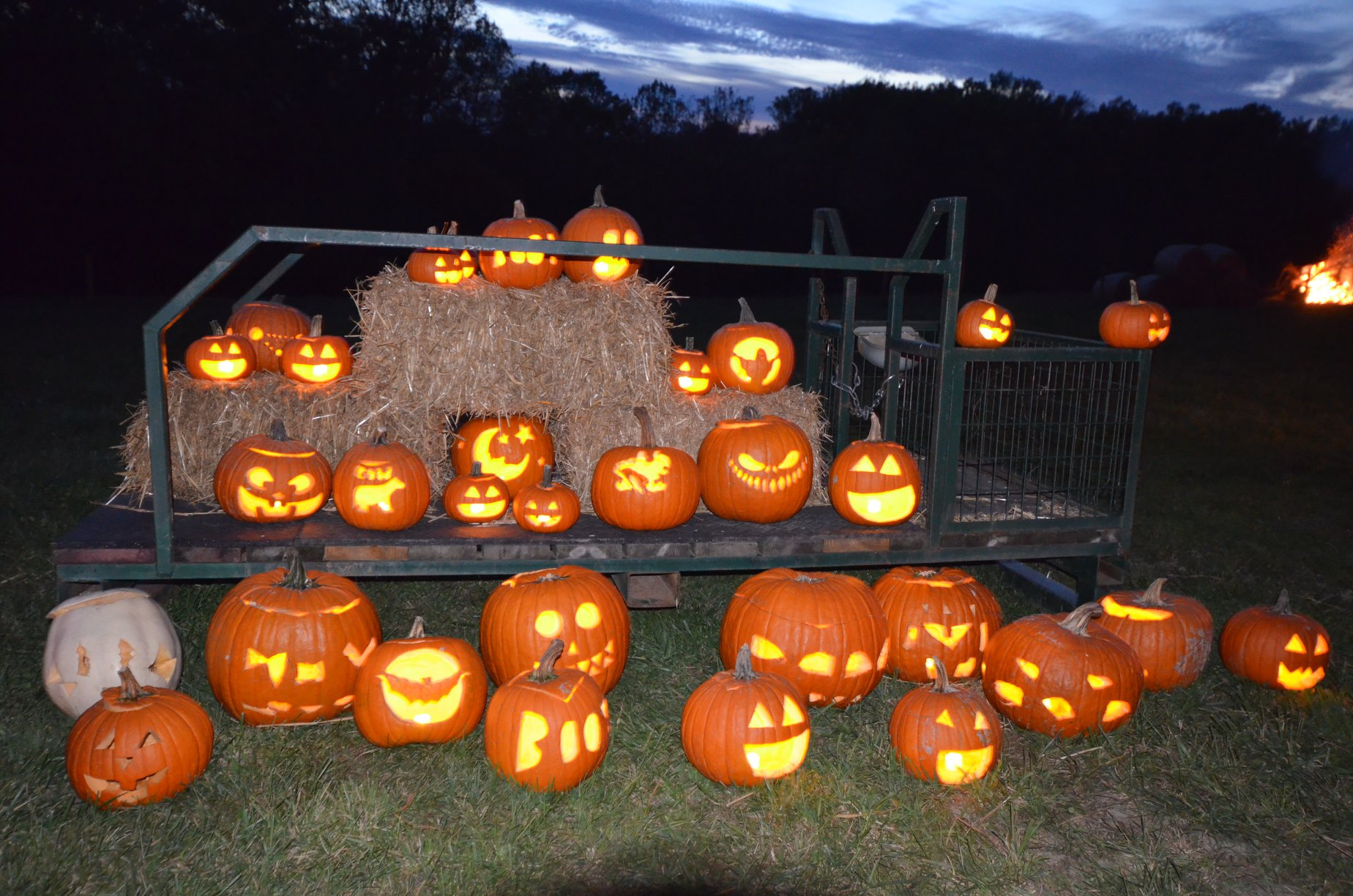 Halloween Events 2020 Maryland 2020 EVENT: Trail of Jack O Lanterns (October 16 17, 23 24, 30 31